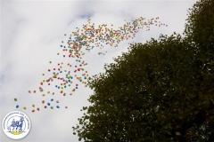 Ballonnenwedstr (13)
