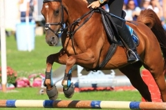 Eventing (26)