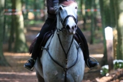 Eventing (60)