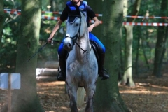 Eventing (62)