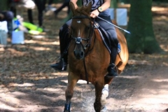 Eventing (64)