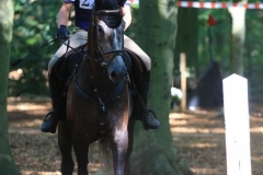 Eventing (67)