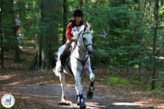 Eventing (81)