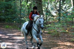 Eventing (82)