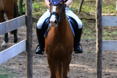 Eventing (30)