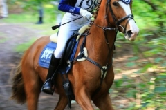 Eventing (34)
