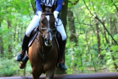 Eventing (36)