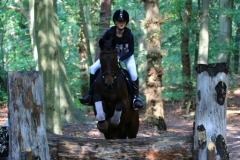 Eventing (39)