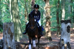 Eventing (40)