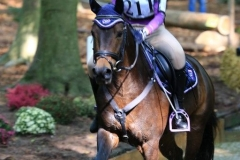 Eventing (47)