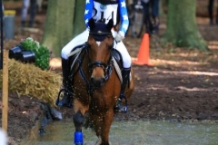 Eventing (50)