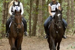 Eventing (20)
