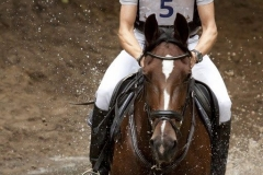 Eventing (43)