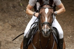 Eventing (44)