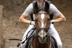 Eventing (45)