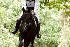 Eventing (49)