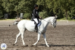 Eventing (5)