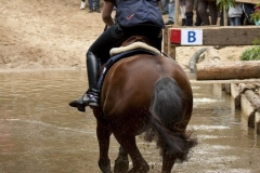 Eventing (52)