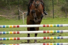 Eventing (80)