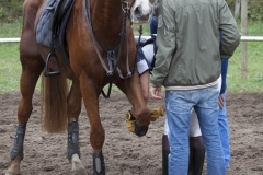 eventing__35_