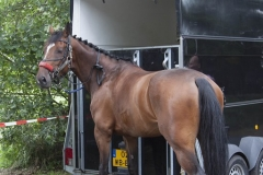 eventing__3_