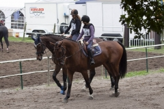eventing__43_