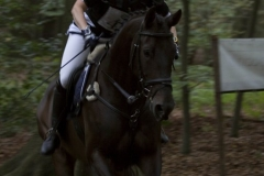 eventing__44_