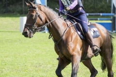 Eventing (71)