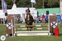 Eventing (74)