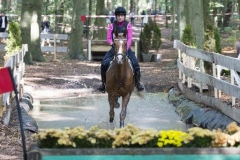Eventing (91)