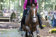 Eventing (94)