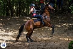 Eventing-12