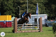 Eventing 2017 (15)