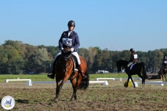 Eventing 2017 (3)