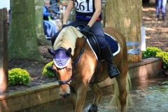 Eventing 2017 (86)