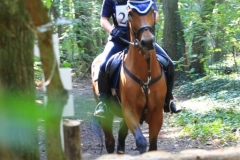 Eventing 2017 (93)