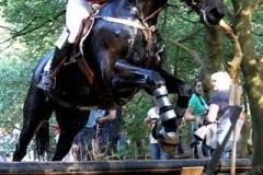 Feestweek Lisse 2011: Eventing - Cross manege Puntenburg