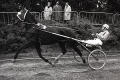 HDV_1965 (11)