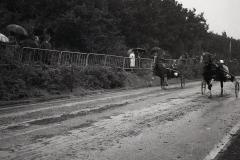 HDV_1965 (12)