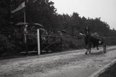 HDV_1965 (4)