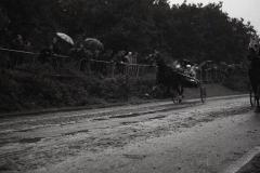 HDV_1965 (7)