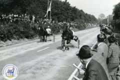 HDV_1966 (1)