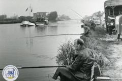 HDV_1966 (4)