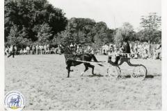 HDV_1975 (19)