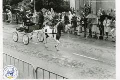 HDV_1975 (20)