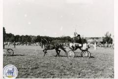 HDV_1975 (21)