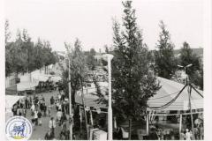 HDV_1975 (31)