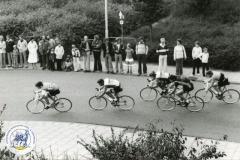HDV_1978 (19)