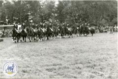 HDV_1978 (20)