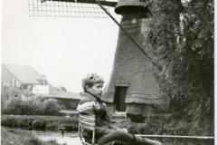HDV_1978 (3)
